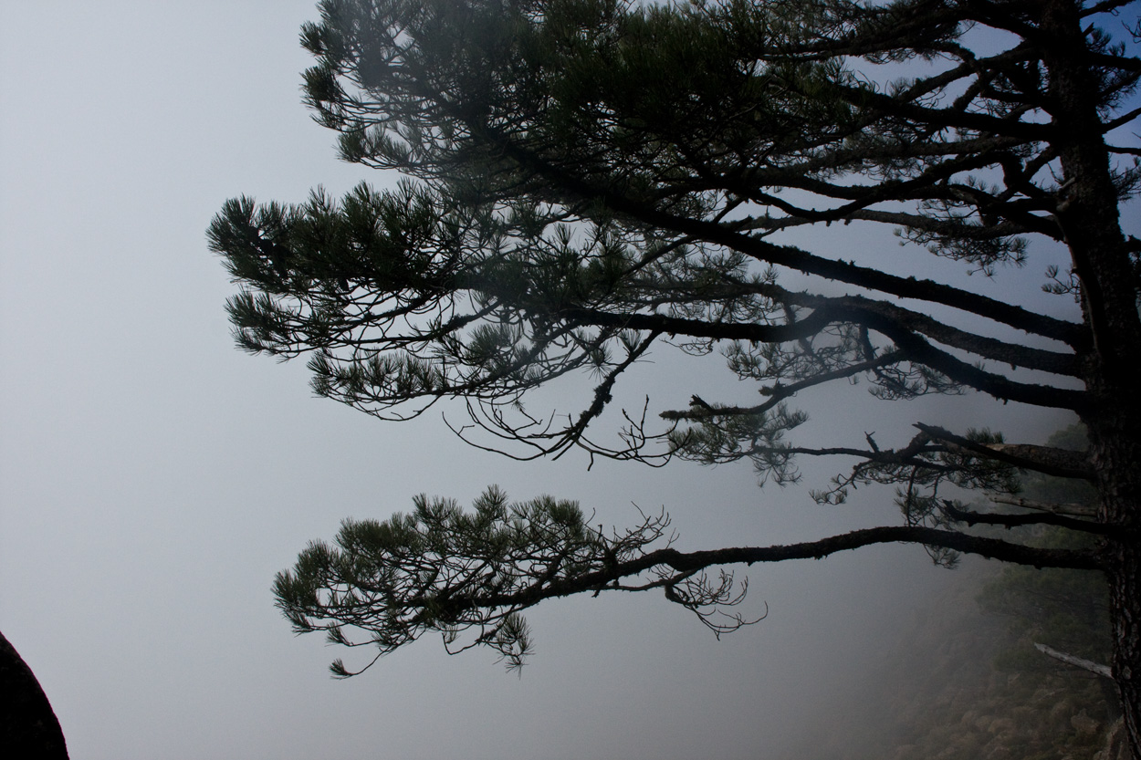 No es infrecuente que la niebla dificulte la orientación