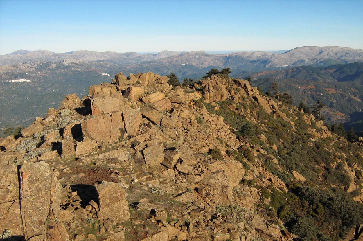 Vistas hacia la Serranía de Ronda, desde el Cerro del Castellón