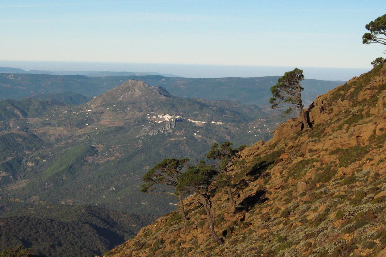 Gaucín desde el Cerro del Castellón