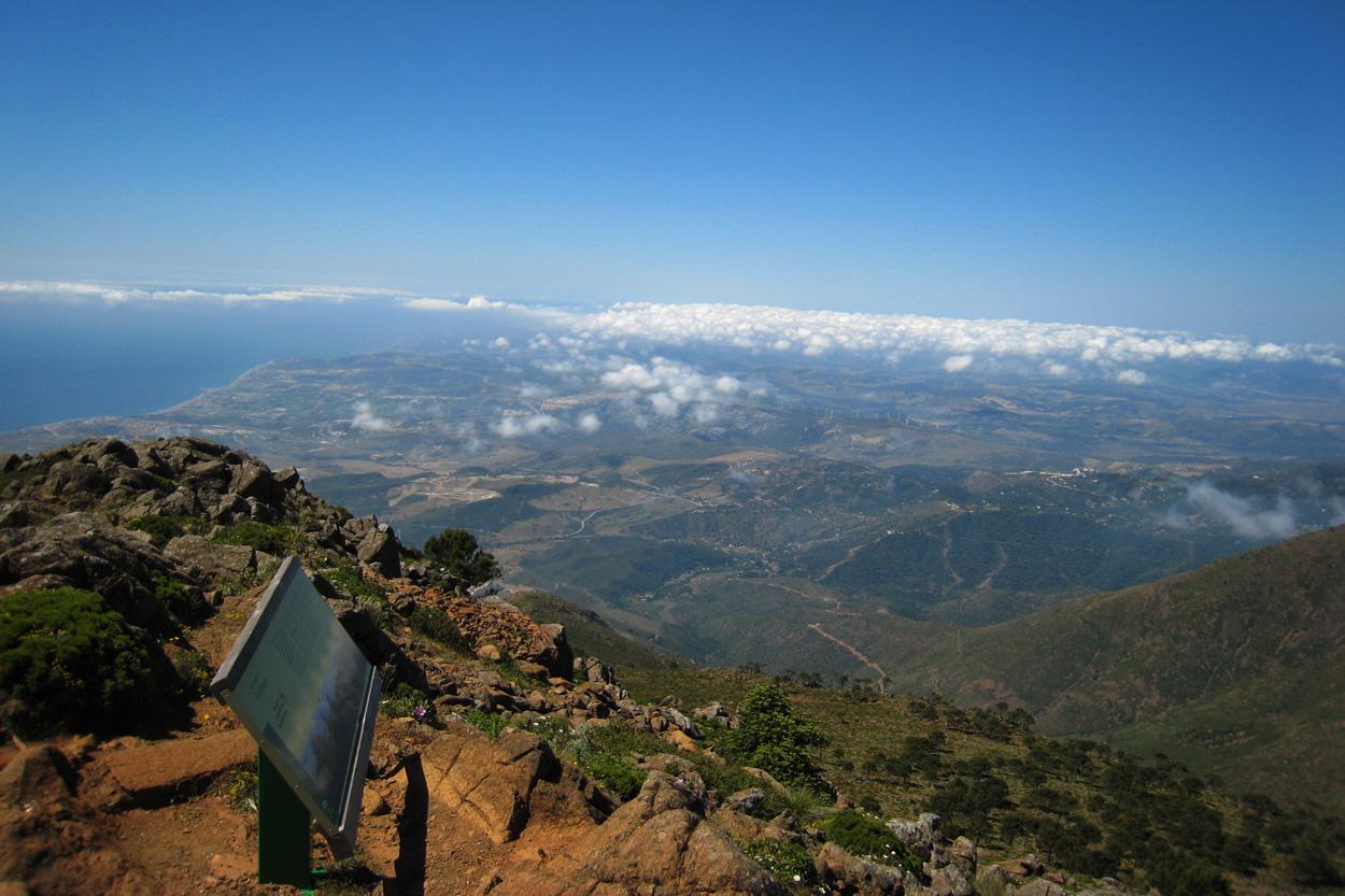 Vistas hacia el Campo de Gibraltar desde los Reales, a 1452 m