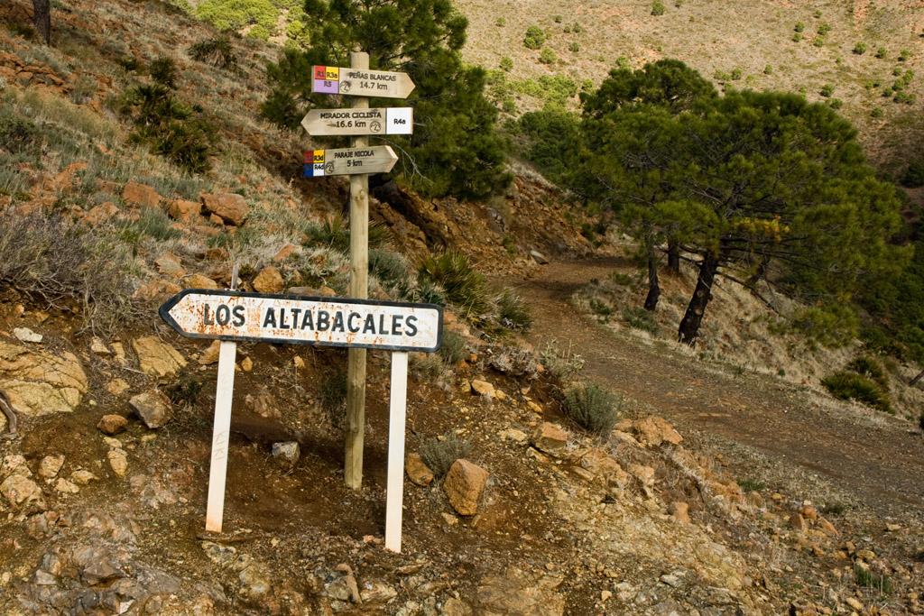 Cruce con el Camino de los Altabacales